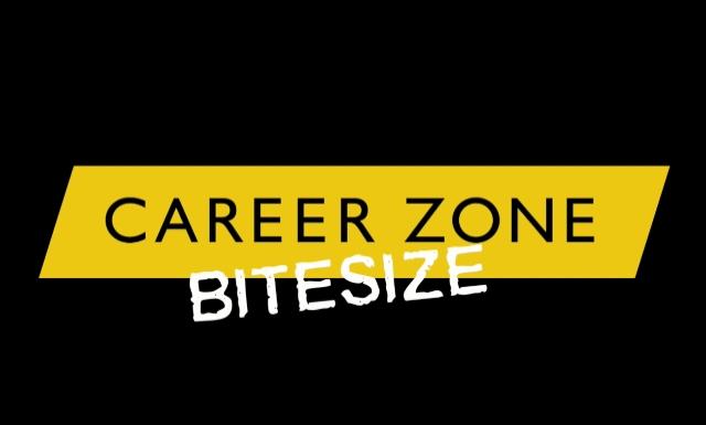 Career Zone Bitesize